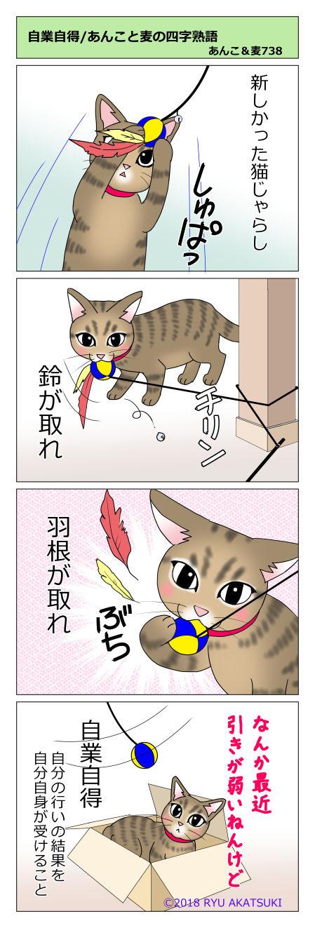 あんこ&麦STORY738