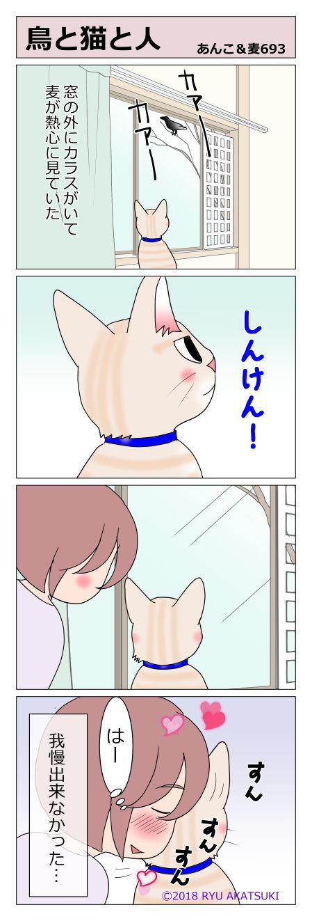 あんこ&麦STORY693