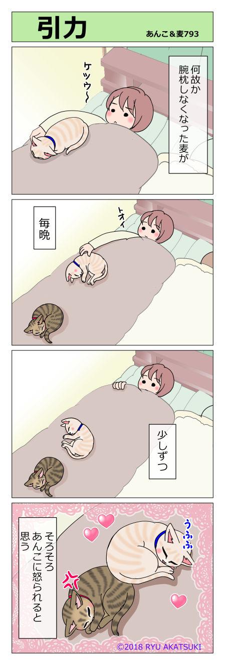 あんこ&麦STORY793