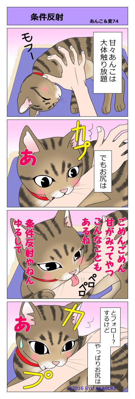 あんこ&麦STORY74