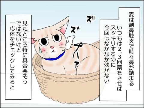 あんこ&麦kenko23a
