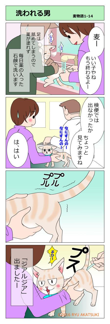 mugimono14