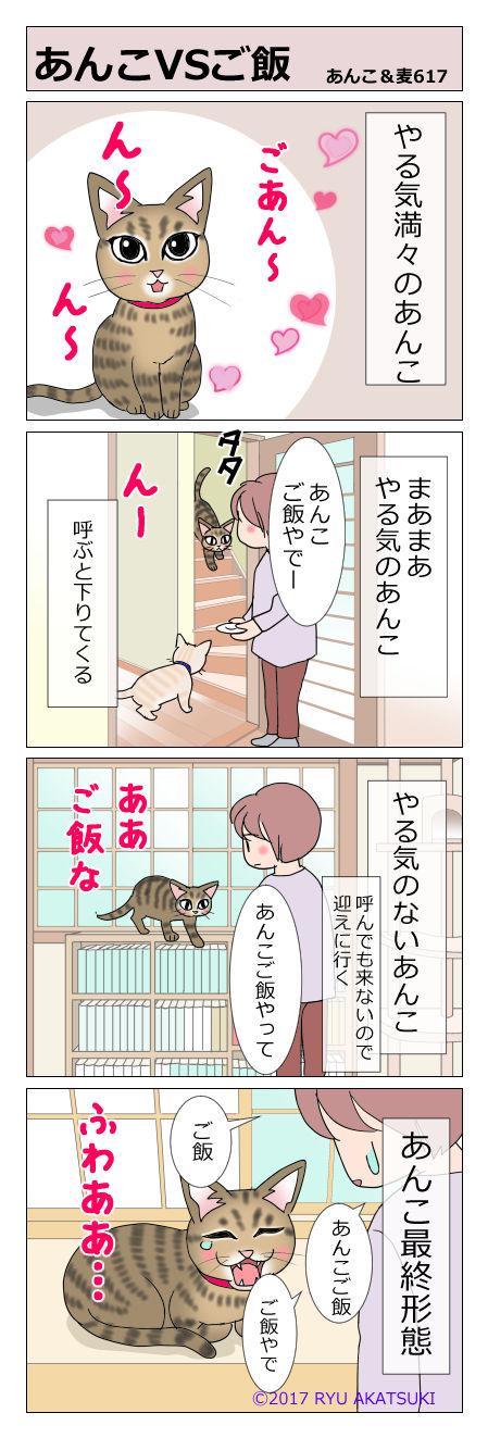 あんこ&麦STORY617