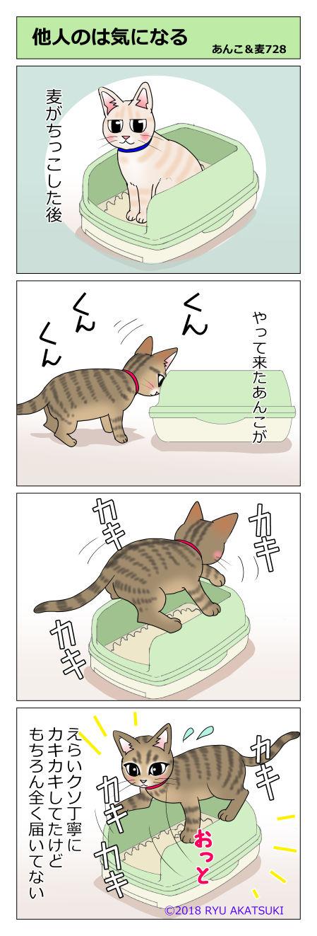 あんこ&麦STORY728