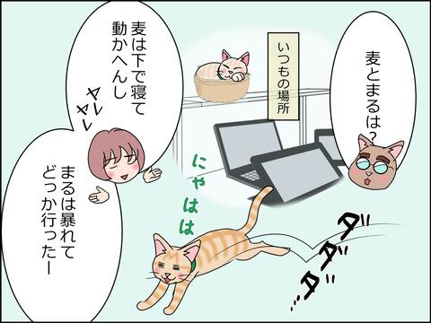あんこ&麦STORY1432c