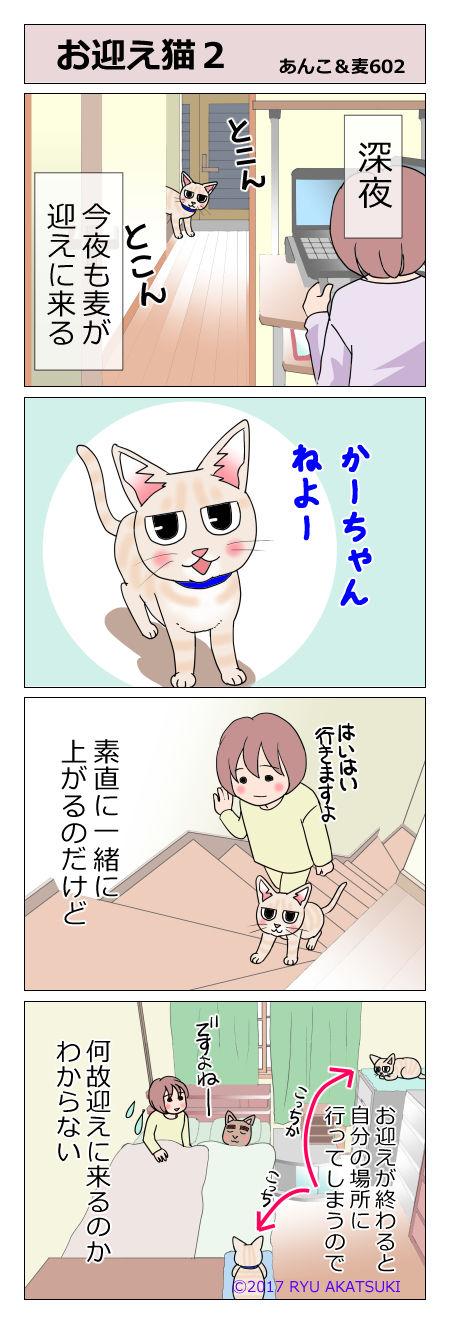 あんこ&麦STORY602