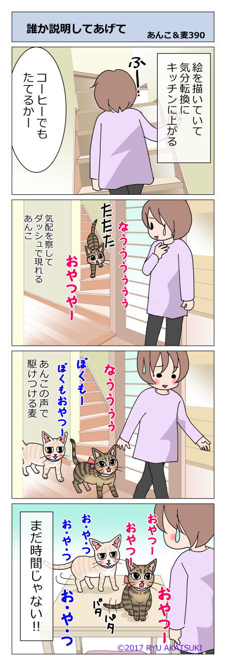 あんこ&麦STORY390