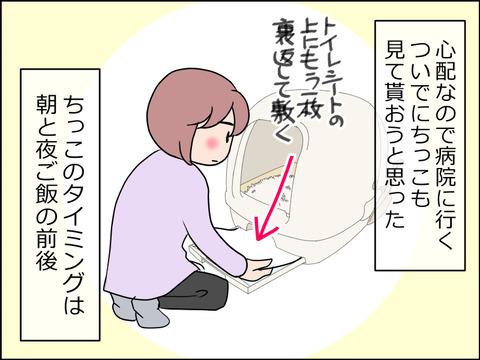 あんこ&麦kenko28a