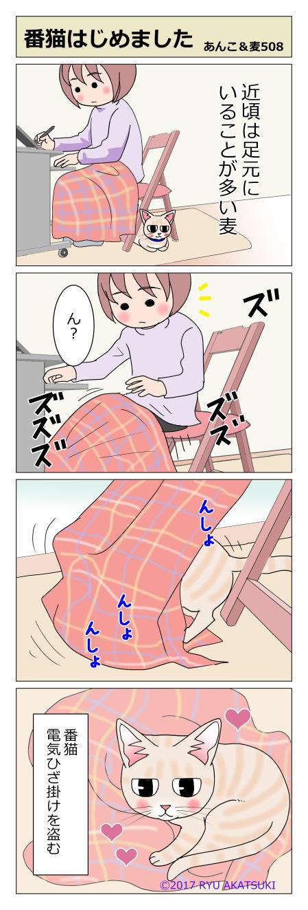 あんこ&麦STORY508