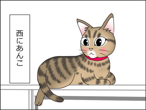 あんこ&麦STORY1459a