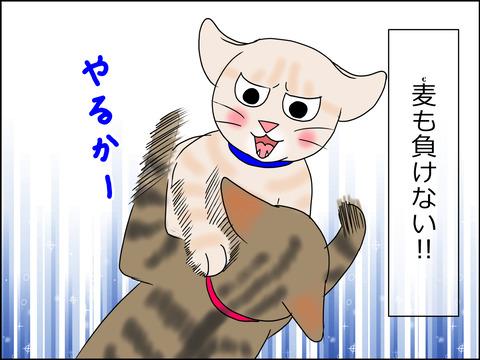 あんこ&麦STORY1442b
