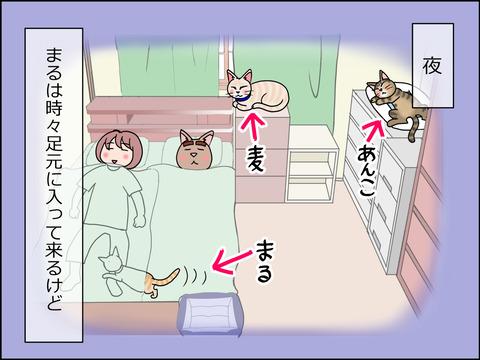 あんこ&麦STORY1441a