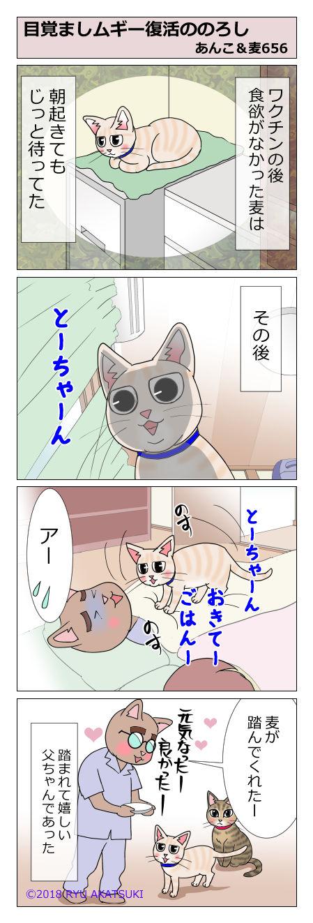 あんこ&麦STORY656
