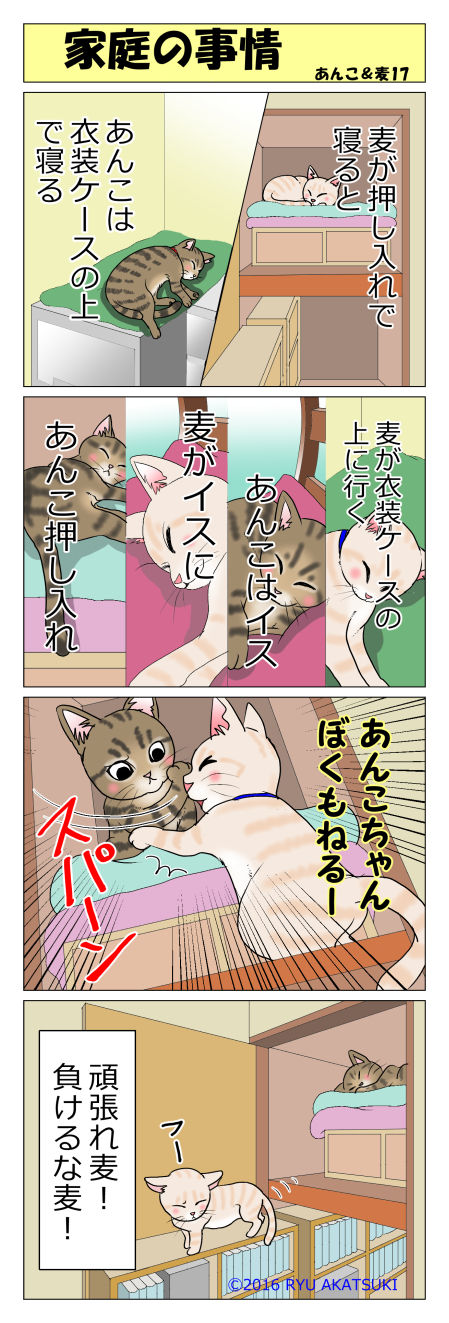 あんこ&麦STORY17