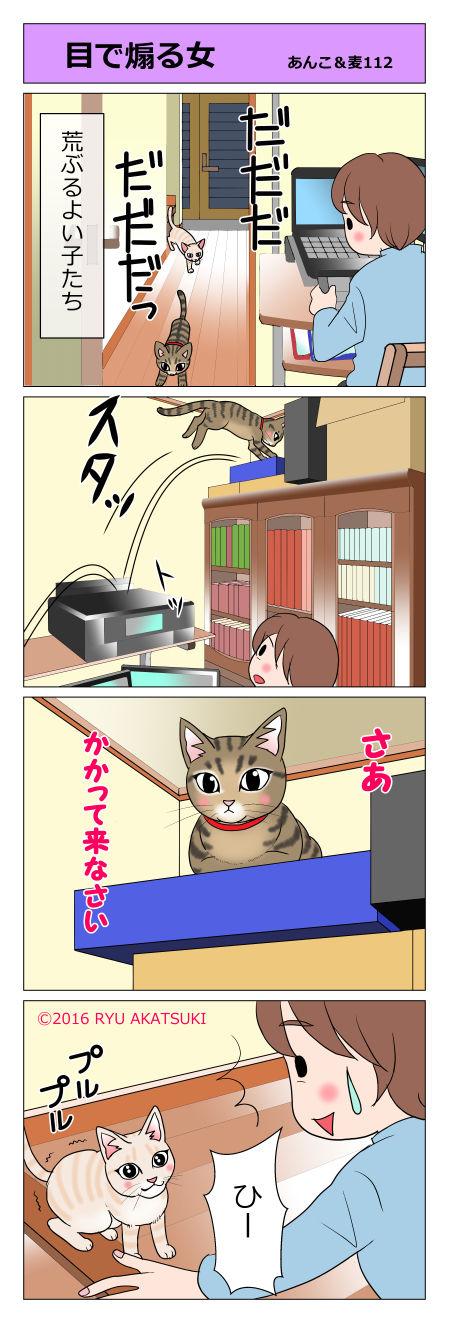 あんこ&麦STORY112