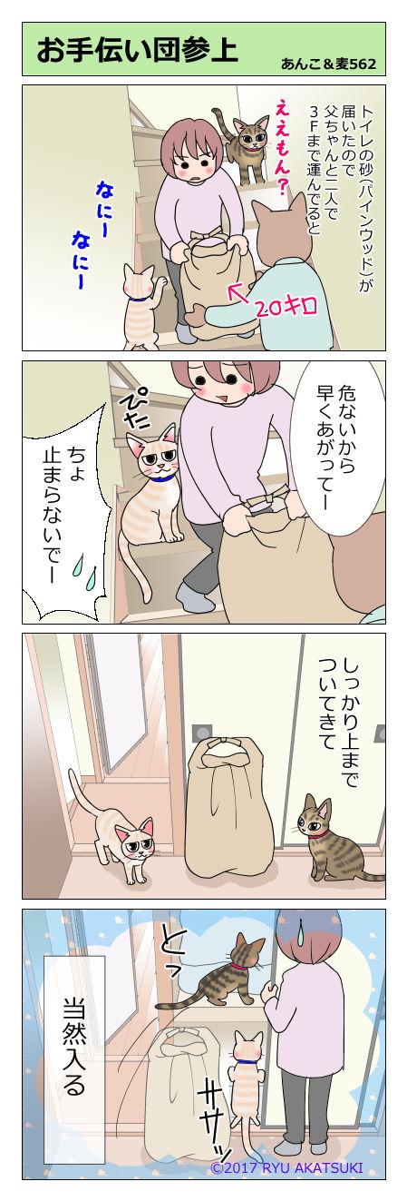 あんこ&麦STORY562