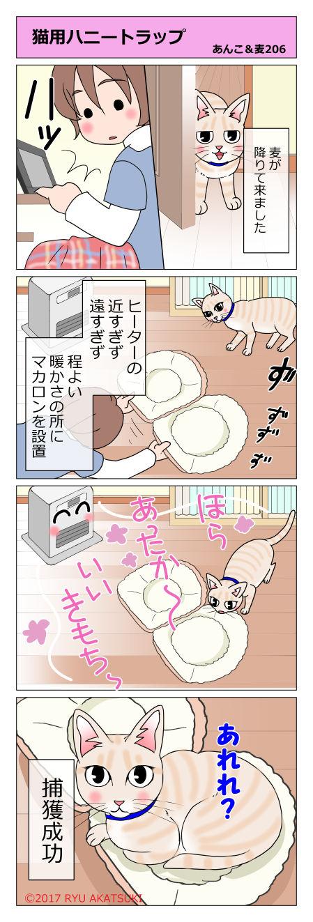 あんこ&麦STORY206