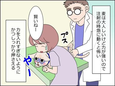 あんこ&麦kenko24b