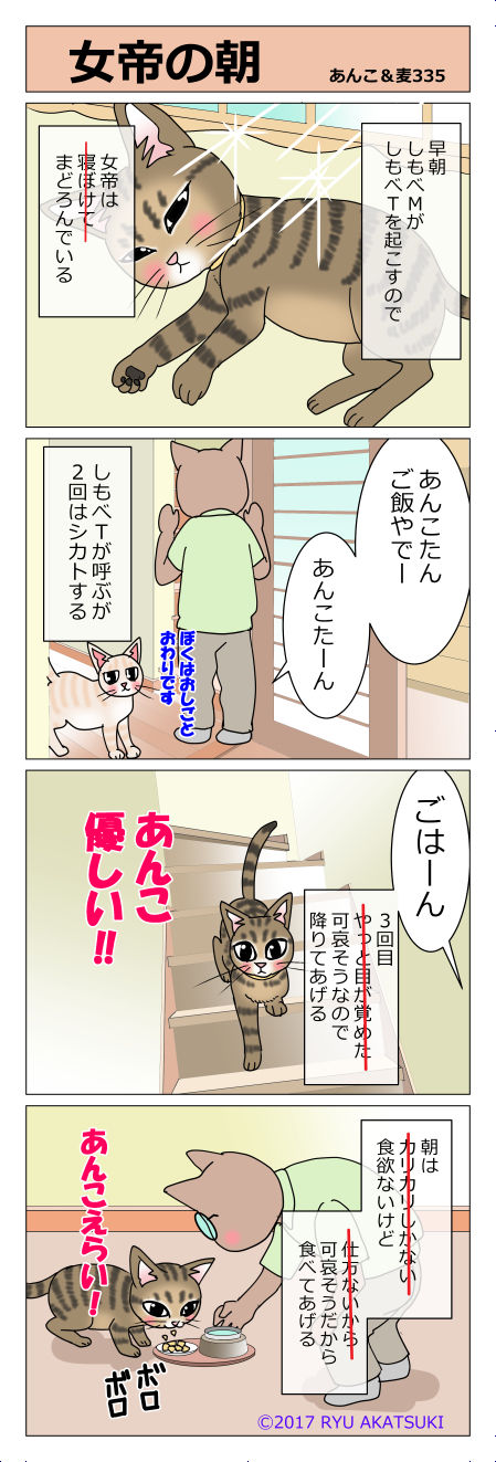 あんこ&麦STORY335