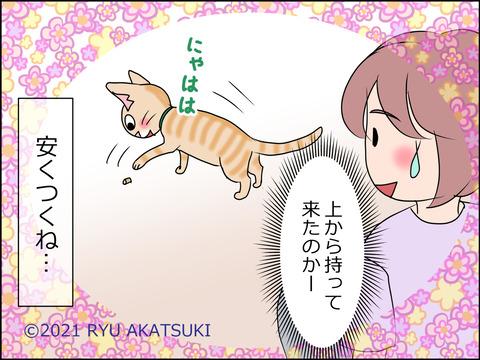 あんこ&麦STORY1455d
