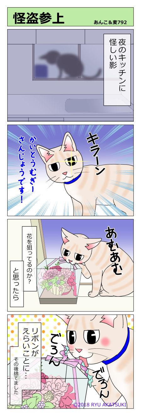 あんこ&麦STORY792