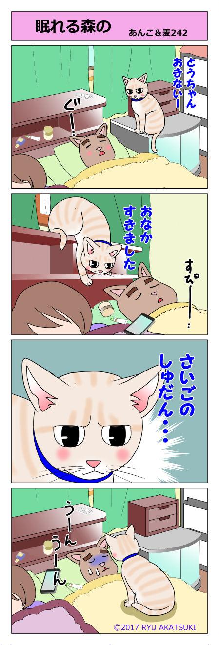 あんこ&麦STORY242