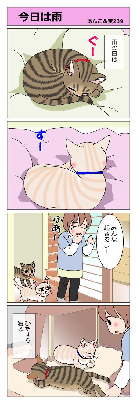 あんこ&麦STORY239