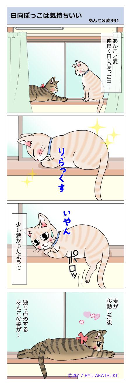 あんこ&麦STORY391