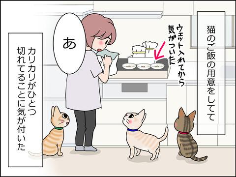 あんこ&麦STORY1440a