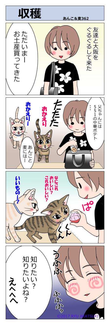 あんこ&麦STORY362