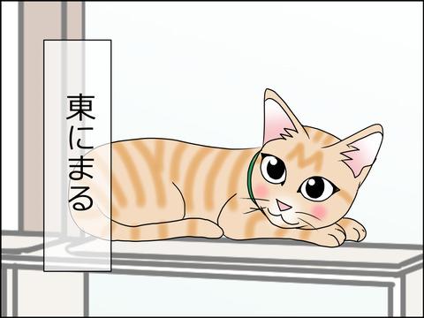 あんこ&麦STORY1459c