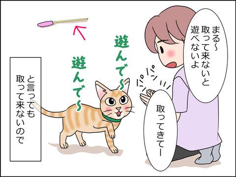 あんこ&麦STORY1454b