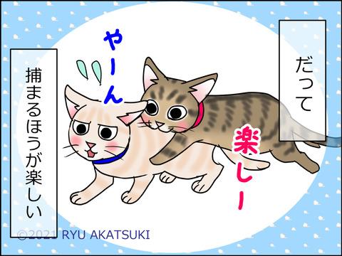 あんこ&麦STORY1464d