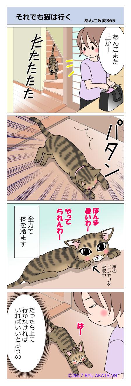 あんこ&麦STORY365