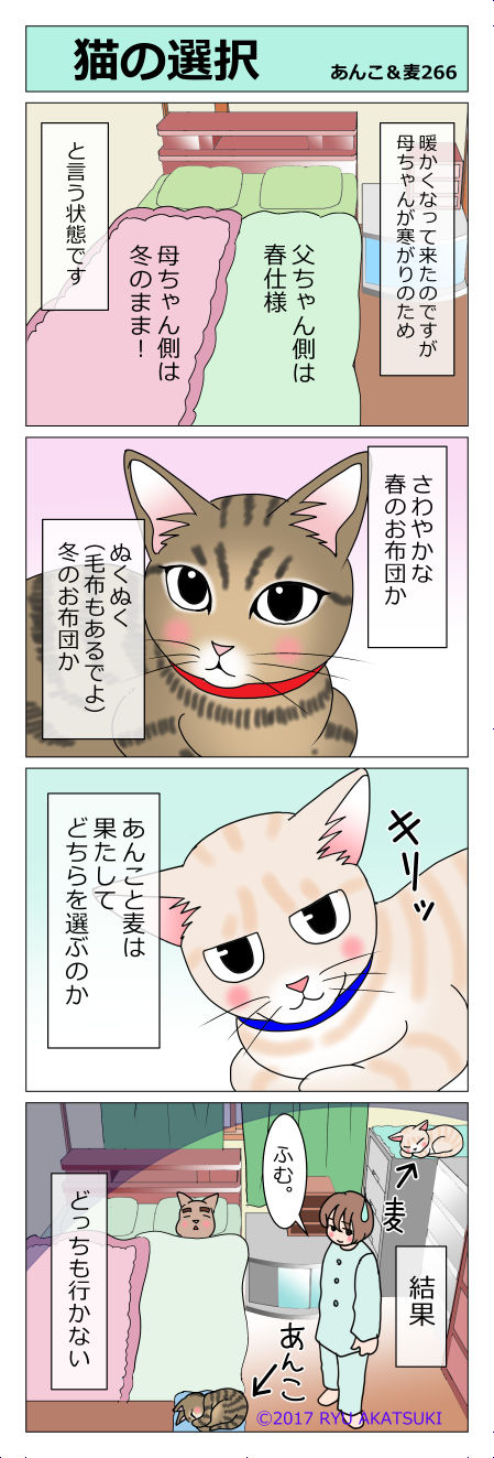 あんこ&麦STORY266