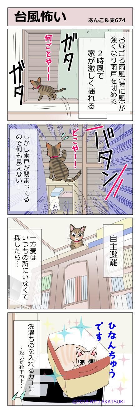 あんこ&麦STORY674