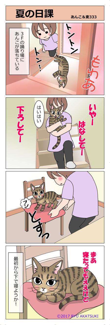 あんこ&麦STORY333