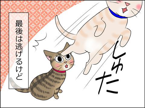 あんこ&麦STORY1442d