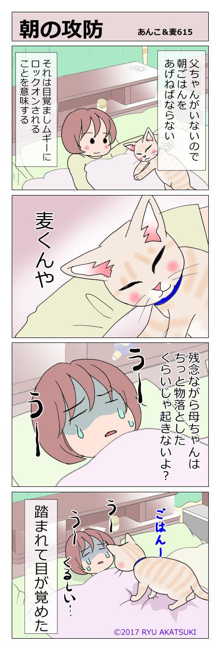 あんこ&麦STORY615