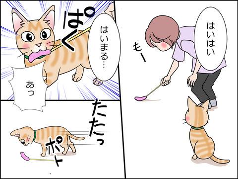 あんこ&麦STORY1454c
