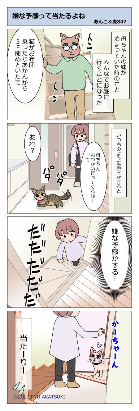 あんこ&麦STORY847