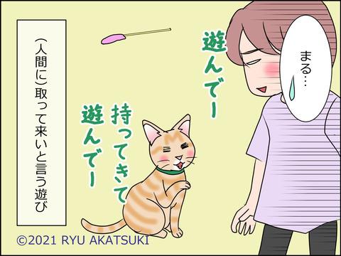 あんこ&麦STORY1454d