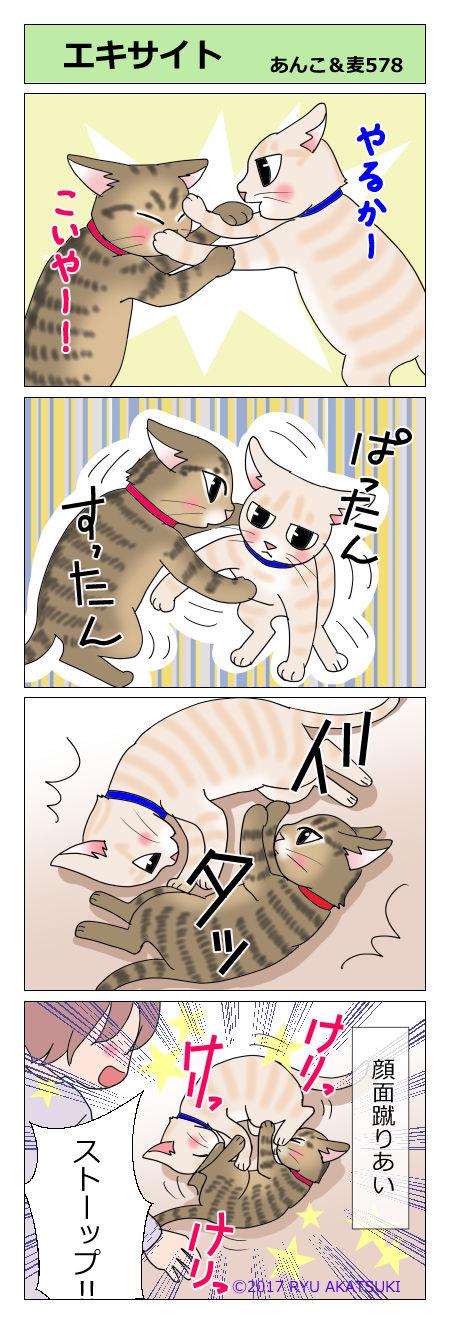 あんこ&麦STORY578