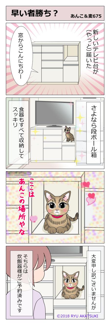 あんこ&麦STORY675