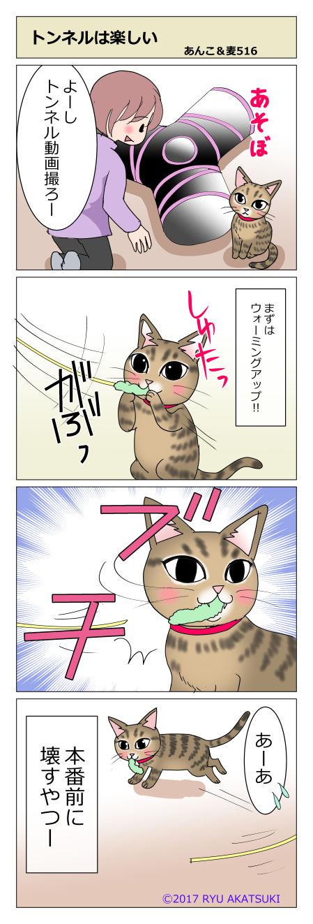 あんこ&麦STORY516