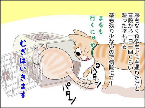 あんこ&麦kenko23c