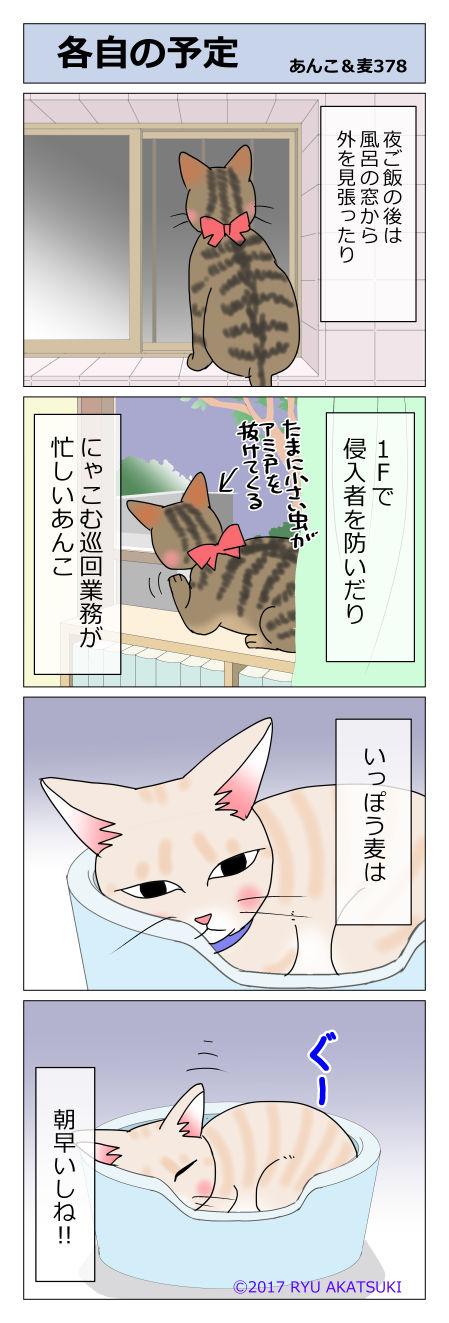 あんこ&麦STORY378