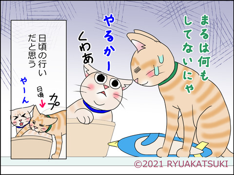 あんこ&麦STORY1430d