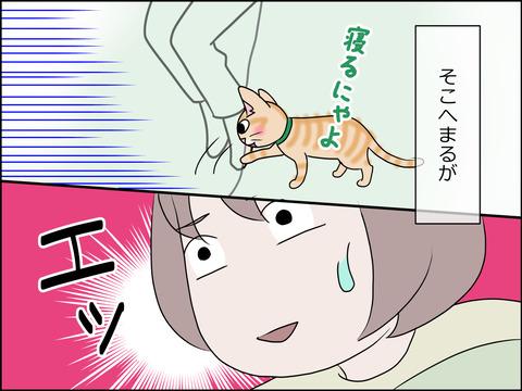 あんこ&麦STORY1452c