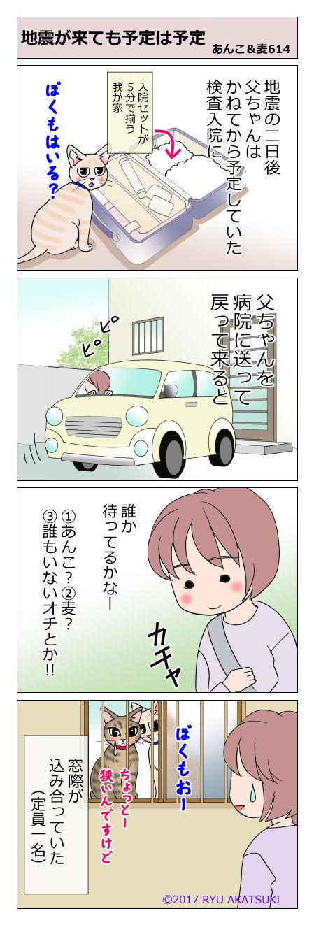 あんこ&麦STORY614
